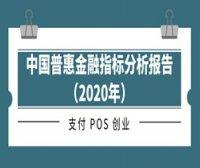 中国普惠金融指标分析报告(2020年)